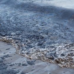 On May 19th, the Plains All American Pipeline ruptured spilling more than 100,000 gallons of crude on the Gaviota Coast. Photo by Erin Feinblatt Photography.