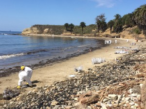 Workers cleaning up Refugio State Beach after the Plains All American Pipeline ruptured and more than 100,000 gallons of crude was spilled.