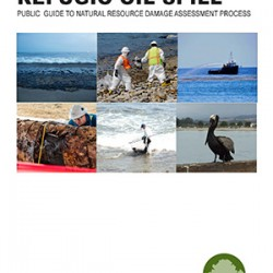 NRDA-guide-cover-image