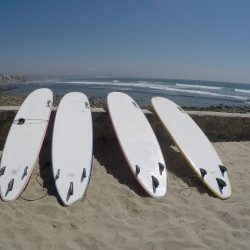 Surf boards_ maggie hall photo