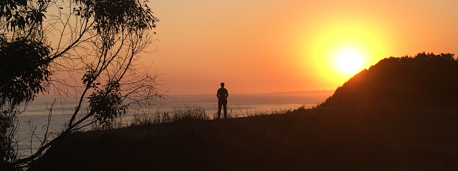 silhouette-at-douglas-preserve_1600x600px