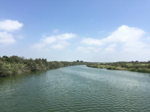 Santa Clara River Estuary. Photo by EDC.