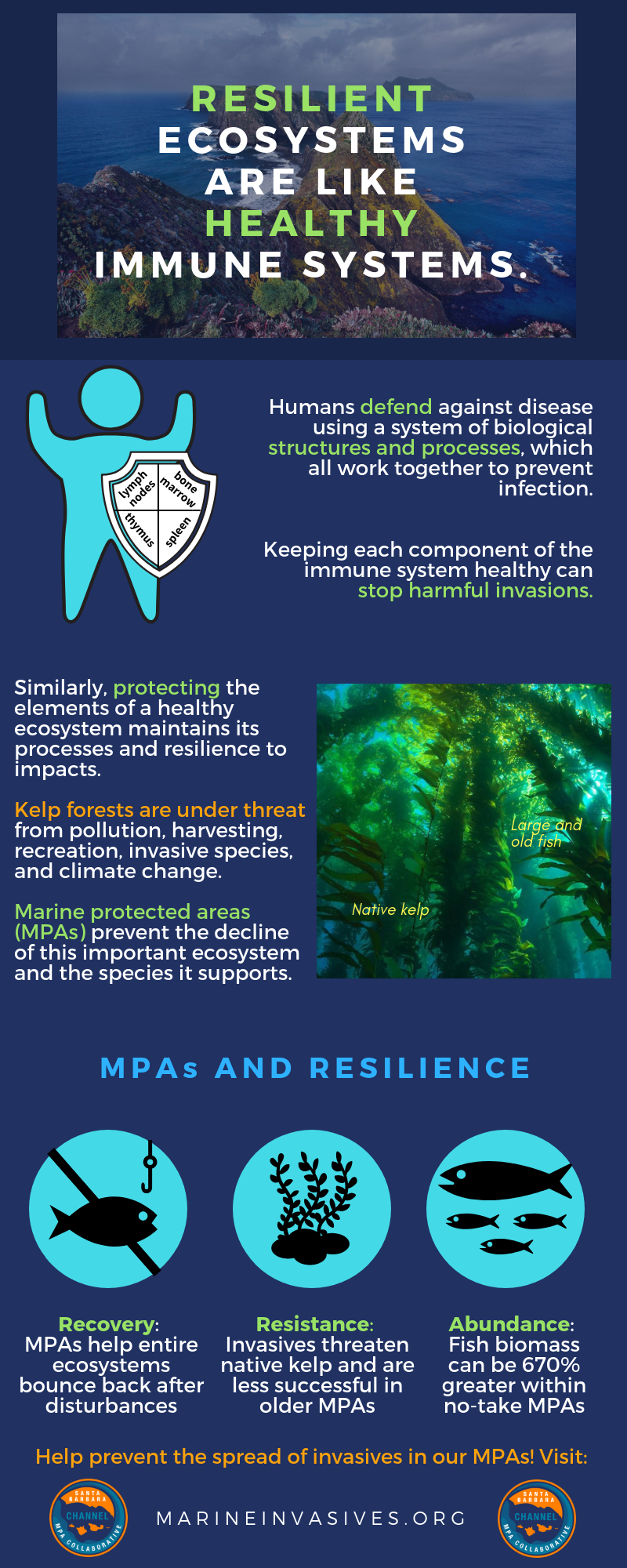 Marine Protected Areas and the Value of Resilient Coasts