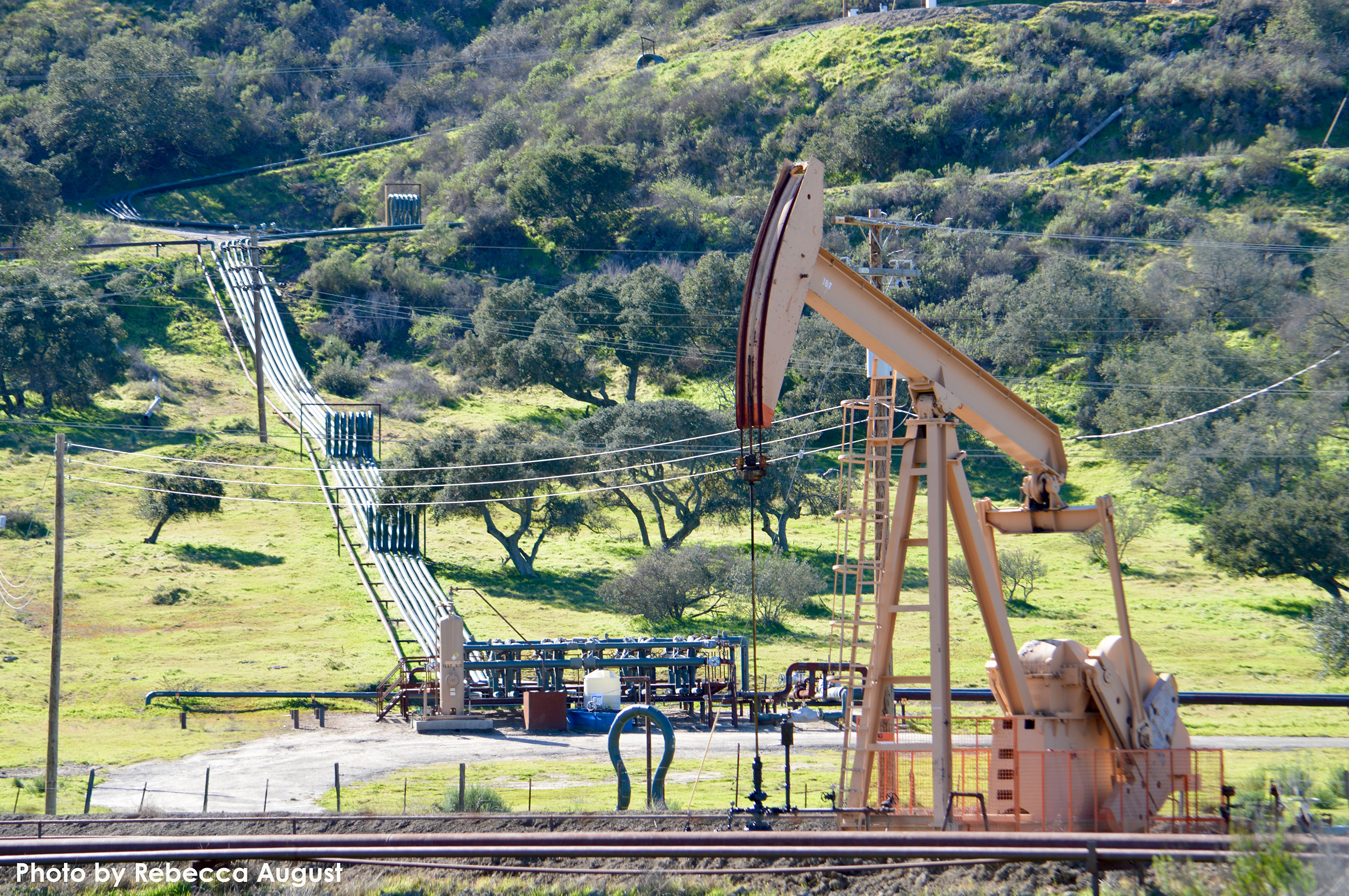 Cat Canyon Oil Field_RebeccaAugust